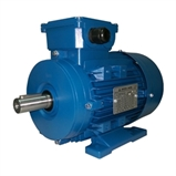 AC Electric Motors